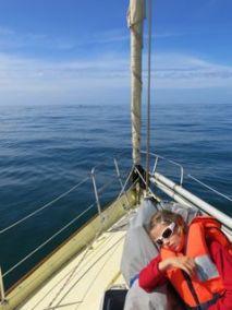 Petite sieste dans le foc pour Awen en partant de l'île d'Yeu.