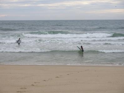 Hop, dans les vagues !