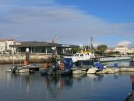 La marina de Figueira et ses PILOTOS