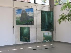 Peintures de la forêt par Susky