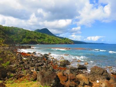 Sud de Basse-Terre avec les sargasses