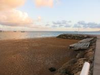 Les sargasses envahissent les côtes au vent des Antilles