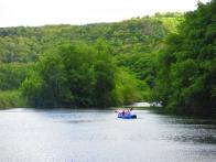 Kayak dans la mangrove à Marie-Galante
