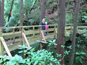 Promenade dans la nature, le long des levadas.