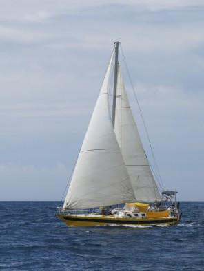 Les Taïlanas, un autre Rêve d'Antilles